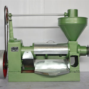 Single Screw Type Oil Press pictures & photos
