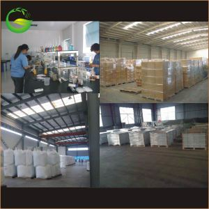 Seaweed Extract Flake/Powder Fertilizer pictures & photos