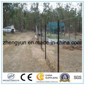 2017 Hot Sale Steel Pipe Star Picket Post pictures & photos