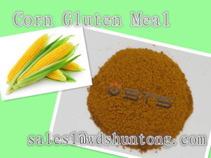 Animal Feed Additive Corn Gluten Meal Protein 60min pictures & photos