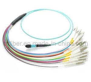 12 Fiber MTP / MPO OM3 50/125 Multi Mode Fiber Optic Patch Cord pictures & photos