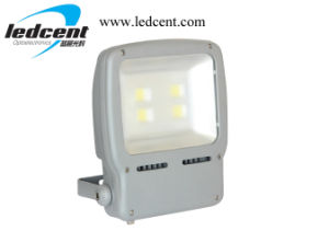 120W LED Flood Light From 10W to 200W pictures & photos
