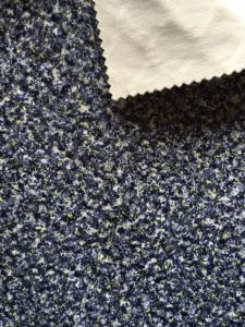 Polyester Knitting Velvet with Printing Design (PR042) pictures & photos