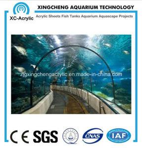 Bending of The Aquarium Tunnel pictures & photos