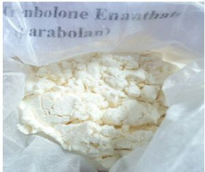 Raw Testosterone Enanthate Powder 250mg-1000mg / Week for Human Growth pictures & photos