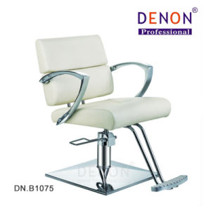 Styling Chair Hair Salon Furniture Beauty Salon Equipment (DN. B1075) pictures & photos