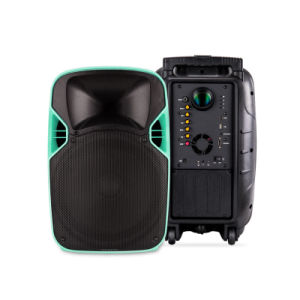 12 Inches Portable PA System Projection Multimedia Speaker with Battery pictures & photos
