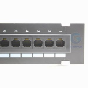 10 Inch 12 Port Wall-Mounted Patch Panel pictures & photos