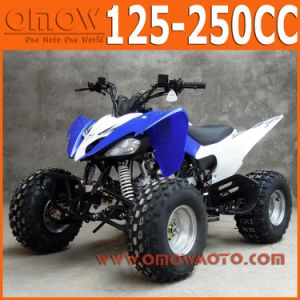 Pentora Cool Sport 125cc 4 Wheeler pictures & photos