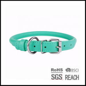 Personalised Cheap Rolled PU Leather Pet Puppy Cat Dog Collar pictures & photos