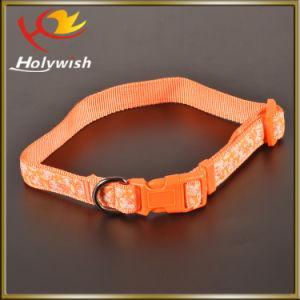 New Nylon Custom Adjustable Retractable Dog Leash pictures & photos