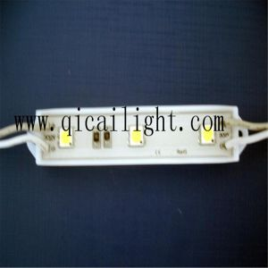 Wholesale Price and Top Quality 3528 LED Strip pictures & photos