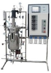 Automatic Stainless Steel Mechanical Stirring Fermenter pictures & photos