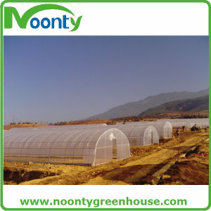 Galvanized Steel Structure Tunnel Greenhouse pictures & photos