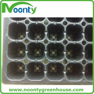 Breeding Tray for Farm Greenhouse Vegetable Growing Planting Kits pictures & photos