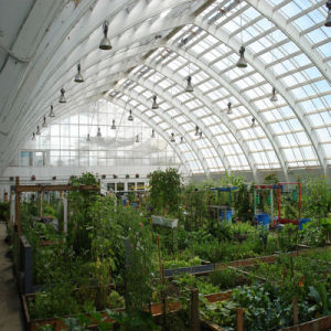 Factory Price Insulation Plastic Arch Green Greenhouse pictures & photos