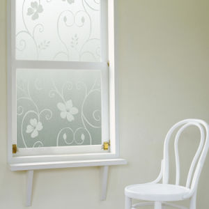 Static Cling Window Film Graphic Printed-P127 pictures & photos