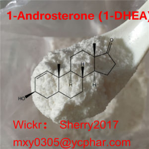 1-Androsterone Prohormones of 1-DHEA Pharmaceutical Powder pictures & photos