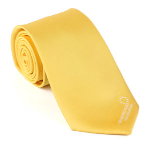 Classic Design Custom Logo Neck Tie/ Men Tie /Polyester Tie pictures & photos