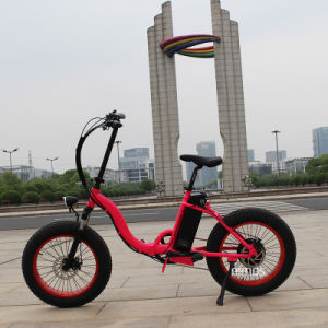 China Factory Super Mini Ebike pictures & photos