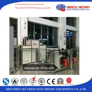 Pallet Baggage Scanner Machine for Logistic Park, Customs pictures & photos