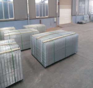 Galvanized Cattle Welded Wire Mesh Panel pictures & photos