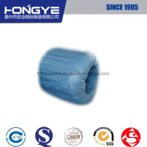 DIN 17223 En 10270 JIS G3521 Soft 10 AWG Wire pictures & photos