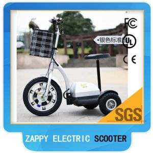Nitro Scooter Electric 3 Wheel Tricycle Trottinette Adult pictures & photos