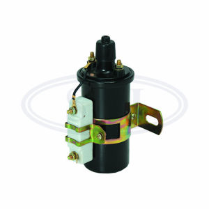 Ignition Coil Dq143 491 4y Mini Car, Ignition Coil with Module, Ignitin Coil, Auto Ignition Coil pictures & photos
