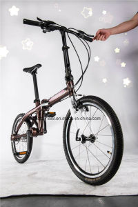 Factory Wholesale Folding Bike Mini Bike No Chain pictures & photos