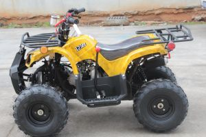New Design 125cc ATV Quad Bike Wholesale China pictures & photos