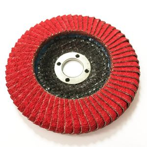 Curve Flap Disc 100*16mm pictures & photos