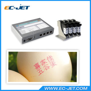 Cosmetic Product Inkjet Printer with Different Coloured Cartridge (ECH802) pictures & photos