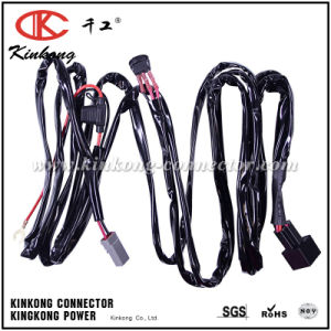 Custom Electrical Light Auxiliary Wiring Harness Heavy Duty pictures & photos