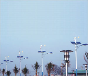 Bright LED Solar Street Light Made in China TUV Certificate pictures & photos