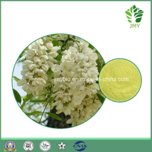 Pure Natural Sophora Alopecuroides L. Extract Rutin and Quercetin pictures & photos