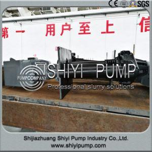 Anti-Abrasion Rubber Handling Sand Verical Slurry Sump Pump pictures & photos
