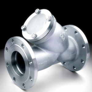 Y-Strainer Flange End Made in China API pictures & photos
