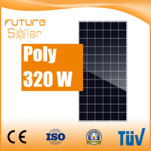 Futuresolar High Efficiency Poly 320W Solar Panel for Solar Power System pictures & photos