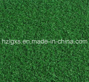 Leisure Artificial Grass for Garden or Balcony pictures & photos