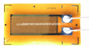 Strain Gauge for Parallel Beam Load Cell (AA) pictures & photos