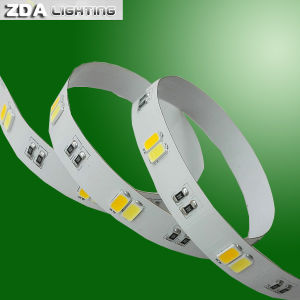 5630 Cct Adjustable LED Flexible Strip Light pictures & photos