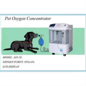 10 Liters Vet Oxygen Concentrator pictures & photos