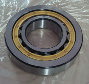 Bearing Nu324 Nj212 Nup218 Roller Bearings for Generator pictures & photos