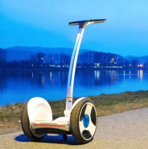 Ninebot Electric Chariot pictures & photos