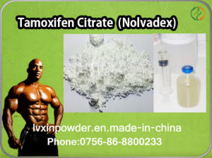 Purity Raw Powder Nolvadex (Tamoxifen Citrate) pictures & photos