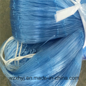 0.20mmx45mmsqx50mdx2000ml Nylon Monofilament Fishing Net pictures & photos