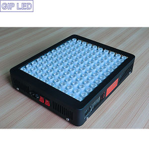 Veg/Bloom Switches 600W LED Grow Lamp with 90degree Lense pictures & photos