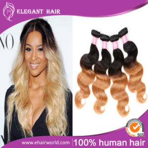Ombre Color Human Hair Peruvian Virgin Hair Body Wave 14inches pictures & photos