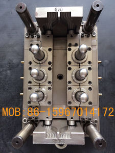 Pet Preform Mould Valve Gate Hot Runner in Taizhou